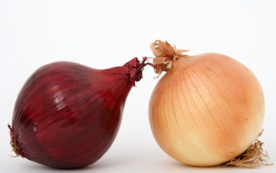 Why Are Organic Onions So Much Better?