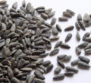 sunflower-seeds-4-1465809-1600x1200